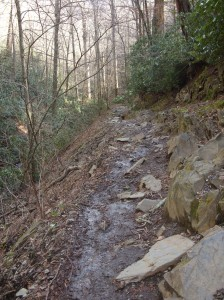 You can see some of the mud and water covering the trail and rocks. This section was one of the nicer sections.